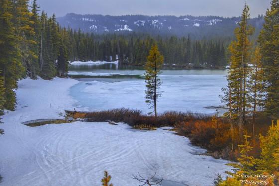 frozen lake marla manuela