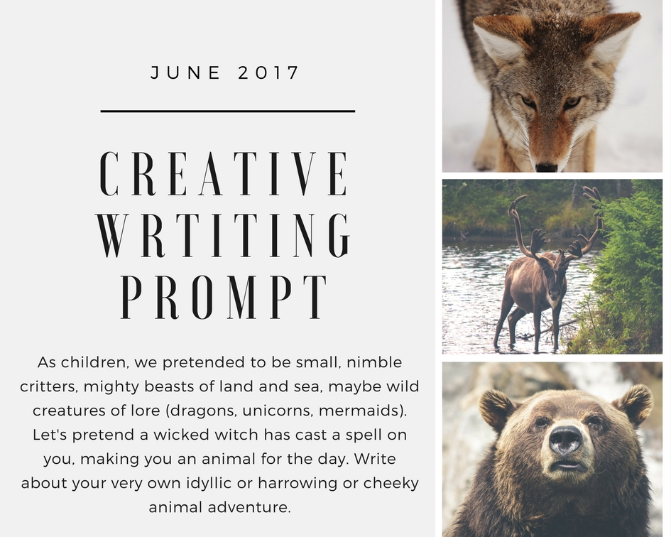 creative letter writing prompts Nearly 600 writing prompts to help inspire your writing write about the sender write a letter to yourself an idea for my creative writing class.
